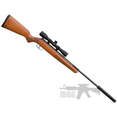 Winchester Model 55RS Air Rifle .22 Special Offer