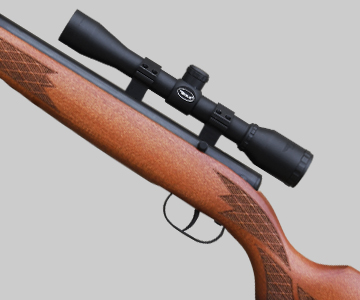 Winchester air rifle