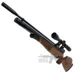 air rifle 002