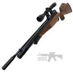air rifle 003