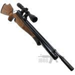 air rifle 004